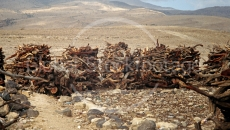 Stacks of wood in Yemen