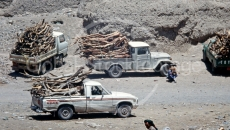 Wood On Cars Yemen